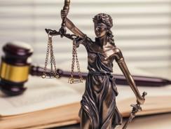 Rechtliches zu Monowheels
